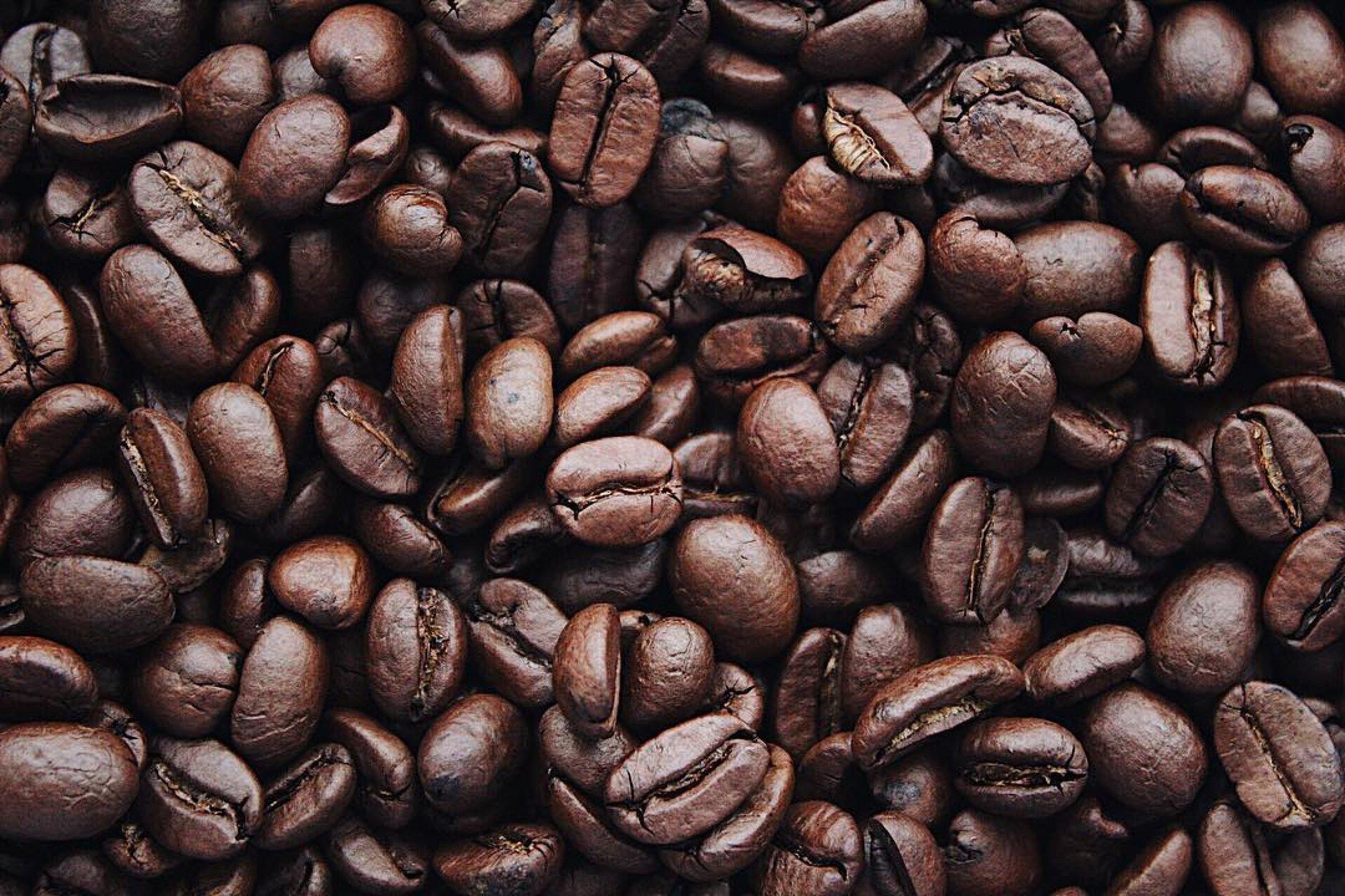 Caffe Elite | Mercator Šiška | Supernova
